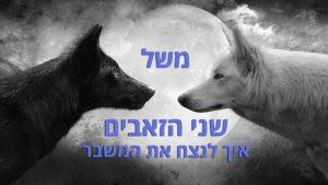 משל שני הזאבים- איך לנצח את המשבר